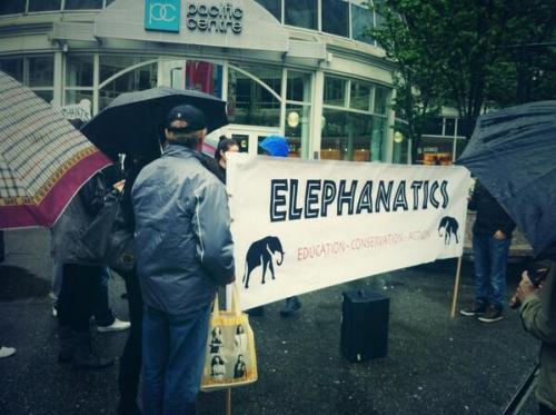 elephantics